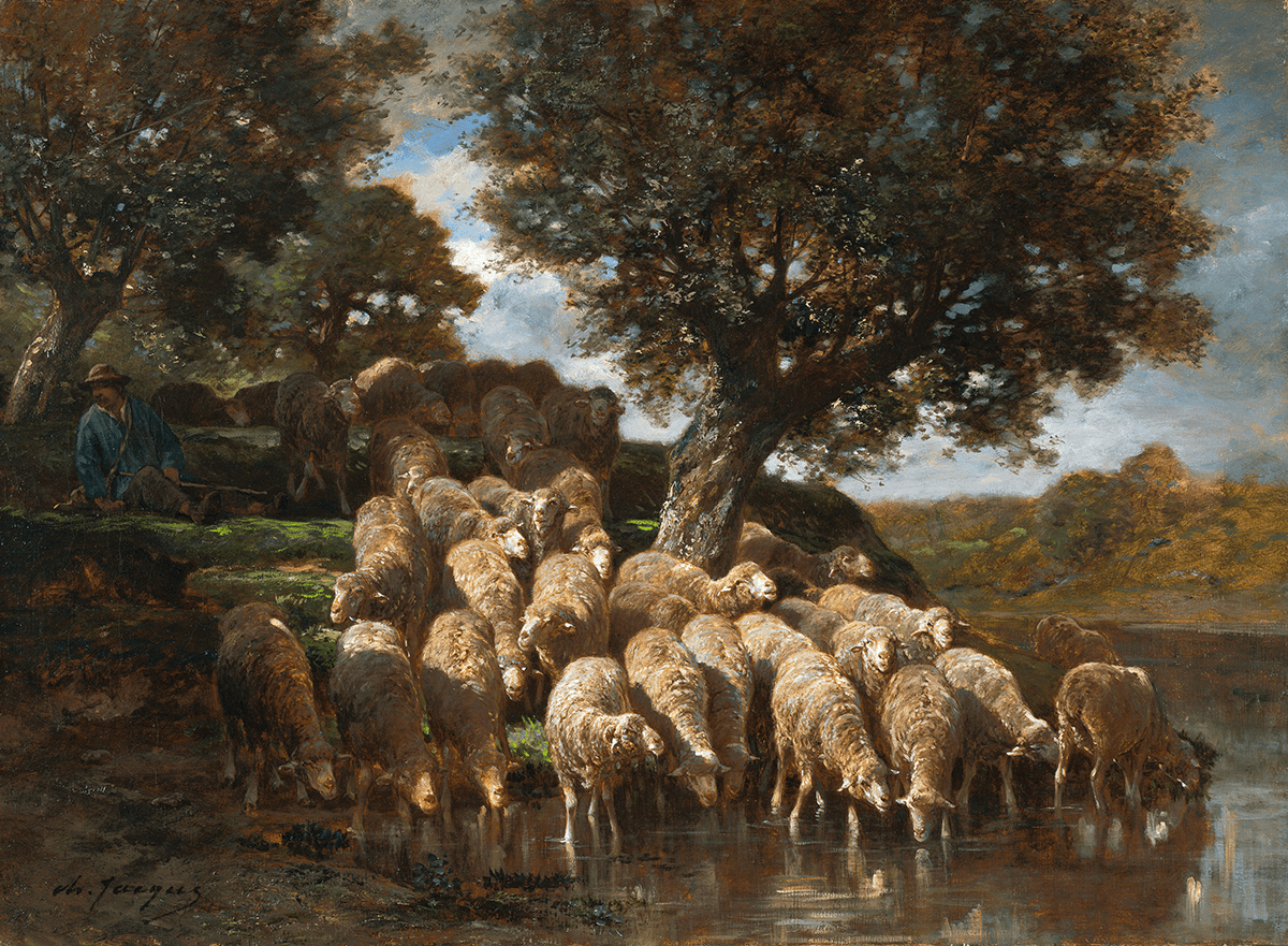 Flock of sheep drinking from a stream; shepherd and dog in background.