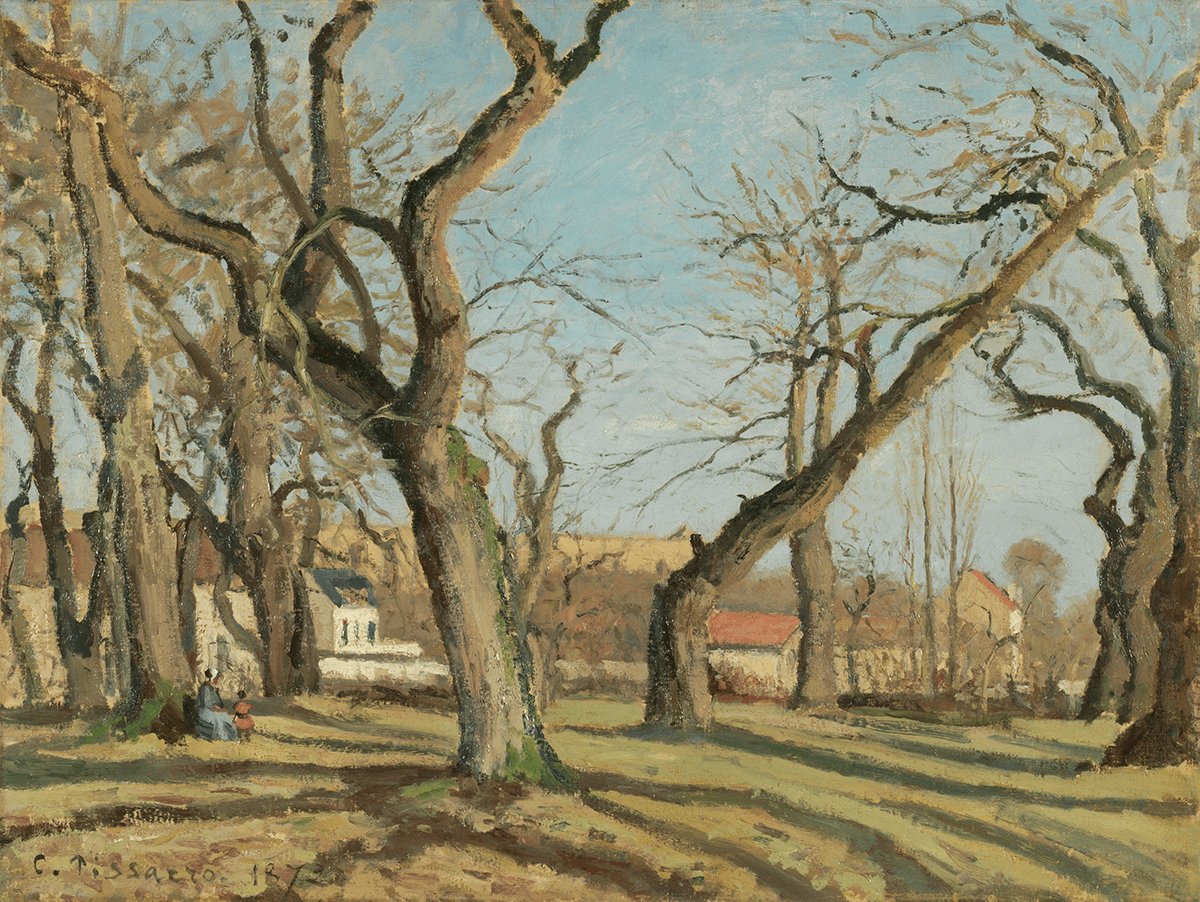 A field of large bare trees whose trunks and branches fill an empty blue sky. The small white houses of a rural village are visible beyond the trees.